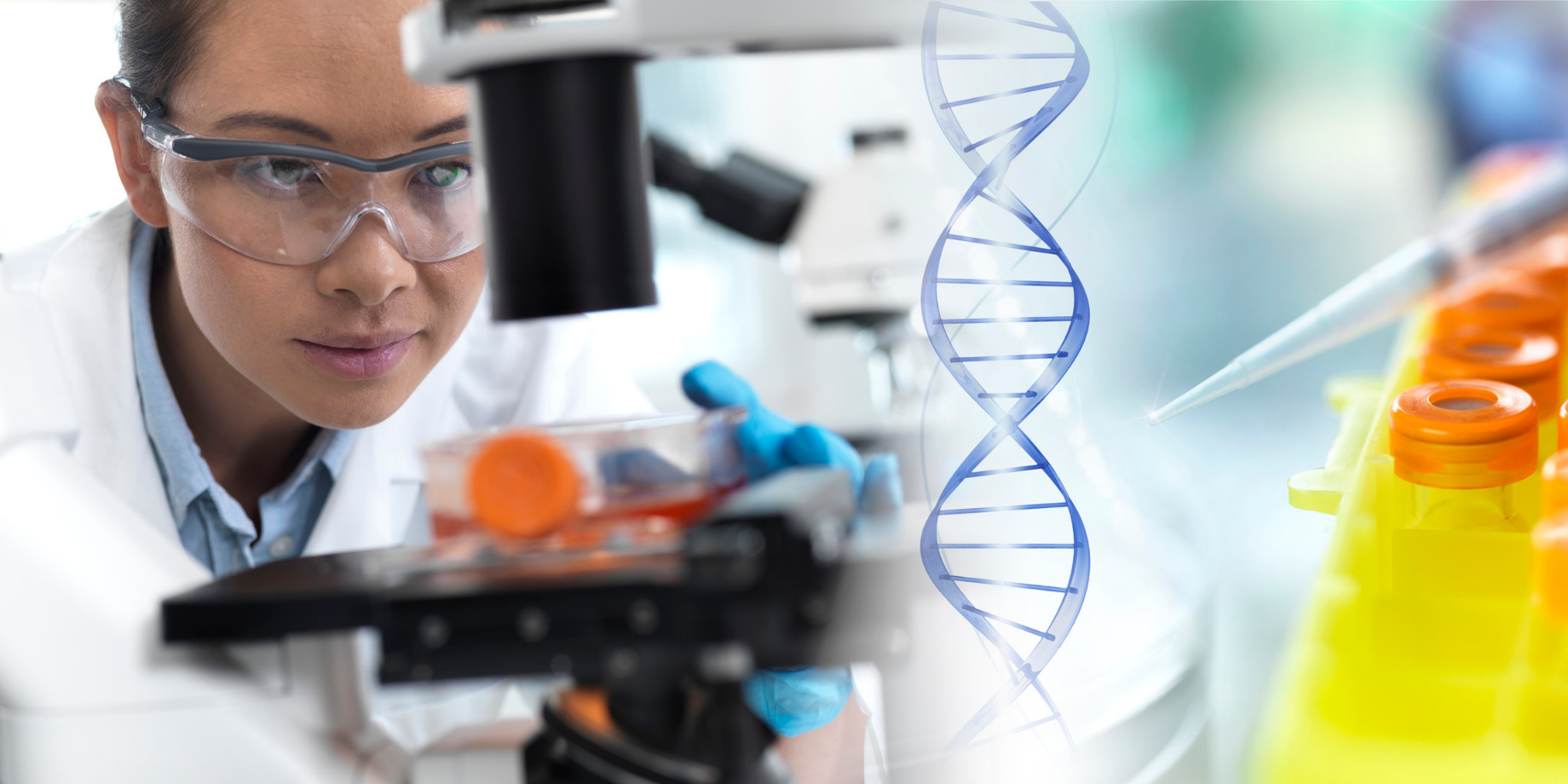 Biología de las Células Madre